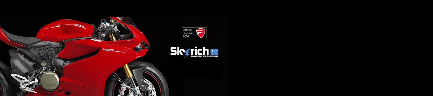 Baterías de litio Skyrich